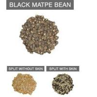 Wholesale Health & Nutrition Benefits Of Eating Black Matpe Bean from china suppliers