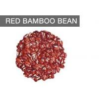 Wholesale Health & Nutrition Benefits Of Eating Red Bamboo Beans from china suppliers