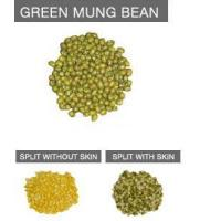 Health &Nutrition Benefits Of Eating Green Beans