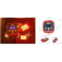 Wholesale Privacy Disease Treatment Infrared Light Therapy Devices With 2 Irradiation Probe from china suppliers