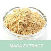 Wholesale ODM & OEM Professional improve sperm vitality product 10:1 Maca P.E. from china suppliers