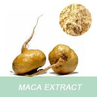 Wholesale China Manufacturer Medical Grade Free Sample 10:1 Root Maca Extract from china suppliers