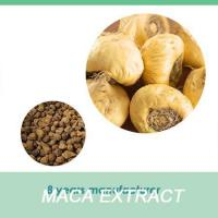 Wholesale Ma ka Maca Extract Maca Powder High Purity from china suppliers