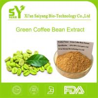 Buy cheap Chlorogenic Acid Green Coffee Bean/Buy Best Natural Organic Green Coffee Seed Extract Powder Online from wholesalers