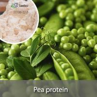 Food Raw Material Pea protein
