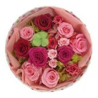 Wholesale A rose and clover of Yotsuba put the happiness in upholstered round box / Preserved Flowers from china suppliers