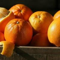 Wholesale NAVEL ORANGES NO.37 deliver gift hamper to shenzhen from china suppliers