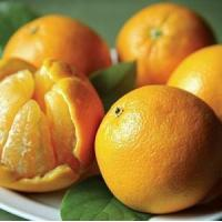 Wholesale CHRISTMAS ORANGES NO.36 deliver gift hamper to shenzhen from china suppliers