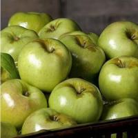 Wholesale GREEN APPLES NO.33 deliver gift hamper to shenzhen from china suppliers