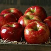 Wholesale HONEYCRISP APPLES NO.32 deliver gift hamper to shenzhen from china suppliers