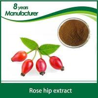 Wholesale 100% Natural Rose Hips Fruit Extract 5% 6% 10% VC from china suppliers