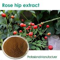 Buy cheap GMP standard Rose Hips Extract,Best price Rose Hips Extract powder from Wholesalers