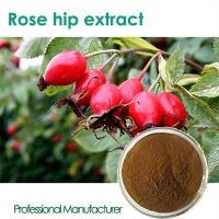 Buy cheap High Quality Natural Rose hip fruit extract with competitive price from Wholesalers