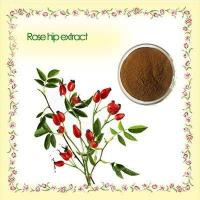 Buy cheap gmp supply natural rose hip fruit extract from Wholesalers