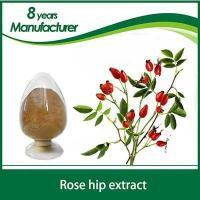 Buy cheap Factory supply Natural & Pure high-quality Rose Hip Extract, Rose hip Oil, Rosehip polyphenols from Wholesalers