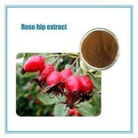 Buy cheap best price rose extract.rose hip berries from Wholesalers