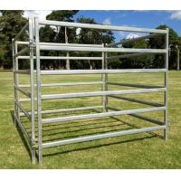 Buy cheap HORSE EQUIPMENT TLMHP04001 HORSE PANEL from Wholesalers