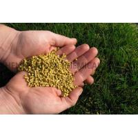 Wholesale Corn Gluten Meal from china suppliers