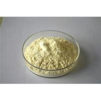 Wholesale Natural extractive Panax Notoginseng Extract from china suppliers