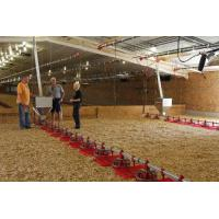 Buy cheap Broiler Feeding Line from wholesalers