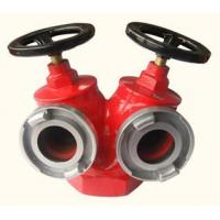 Wholesale Indoor Fire Hydrant SNSS65 from china suppliers