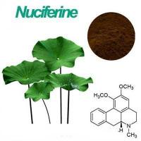 Wholesale wholesale Lotus Leaf p.e Nuciferine 4% from china suppliers