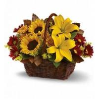 Wholesale Golden Days Basket [T174-2A] from china suppliers
