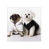 Wholesale pet products DHP-3(synthetic padding) from china suppliers
