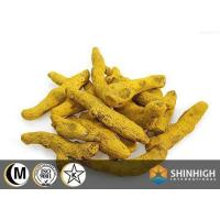 Buy cheap Conventional food Tumeric powder from wholesalers