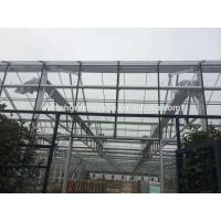 Venlo glass agricultural green house