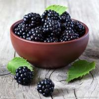 Wholesale Blackberry Powder Sale from china suppliers
