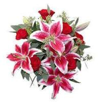 Buy cheap Roses and Lilies from wholesalers