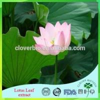 Lotus Root Powder Extract 20:1 /Lotus Seed Extract Nuciferin 0.2% 1% Lotus Leaf Extract