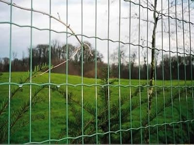 China Holland Wire Mesh Welded Wire Fence