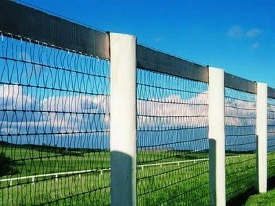 China Diamond Mesh Horse Fence Welded Wire Fence