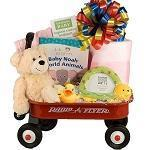 Baby Girl gift Basket, Radio Flyer Wagon Baby Gift