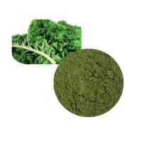Wholesale Kale Powder Organic from china suppliers