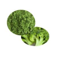 Wholesale Bio Broccoli Powder from china suppliers