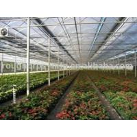 China POLY ARCH GREENHOUSE on sale