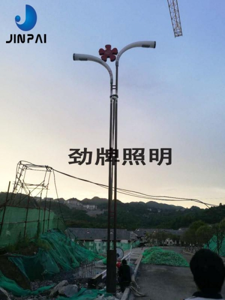 China LED road light
