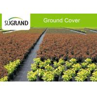 Wholesale Plastic 90GSM White Agricultural Weed Mat Ground Cover For Blueberry from china suppliers