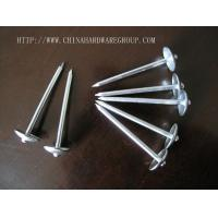 Nails Galvanized Roofing Nail