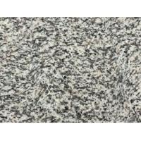 Wholesale Granite Tiger Skin White from china suppliers