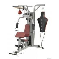 Wholesale Gym Equipment Multi Gym Equipment from china suppliers