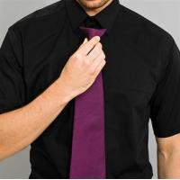 Wholesale Clothing Colours fashion clip tie from china suppliers