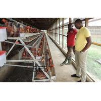 Buy cheap Battery Cage from wholesalers