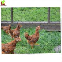 Buy cheap Poultry Chicken Netting from wholesalers