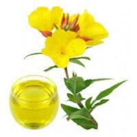 Wholesale Evening Primrose Oil from china suppliers