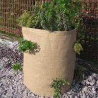 Wholesale Growing Burlap Herb Planter Burlap Herb Planter from china suppliers