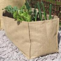 Wholesale Growing Burlap Vegetable Planter Burlap Vegetable Planter from china suppliers